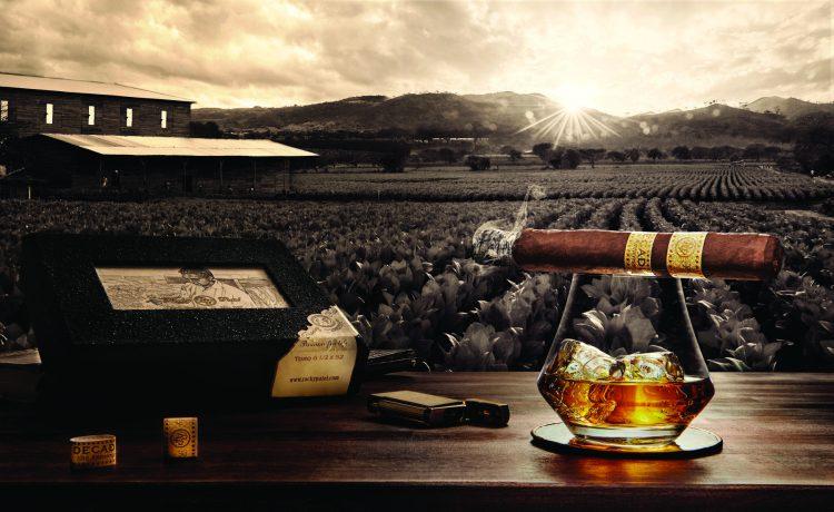 Cigar Rocky Patel Decade 2