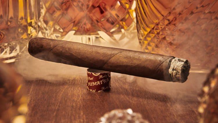 Cigar Rocky Patel Edge Sumatra 14