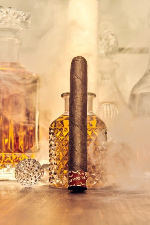 Cigar Rocky Patel Edge Sumatra 16