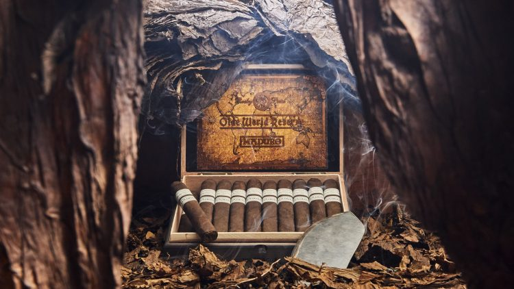 Cigar Rocky Patel Olde World Reserve Corojo Maduro 5