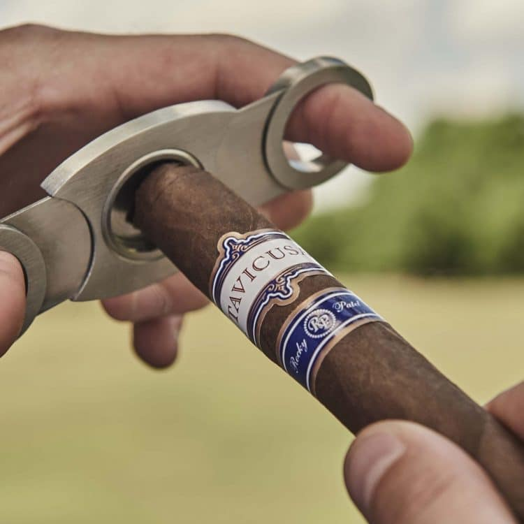Cigar Rocky Patel Tavicusa 4