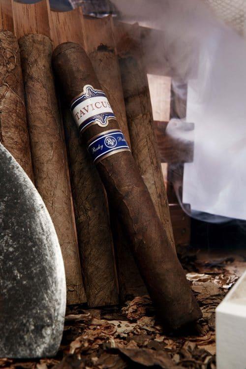 Cigar Rocky Patel Tavicusa 7