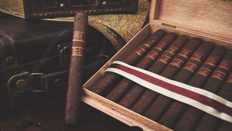 Cigar Rocky Patel Vintage 1990 17