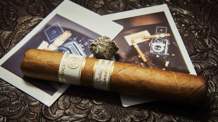 Cigar Rocky Patel Vintage 1999 12