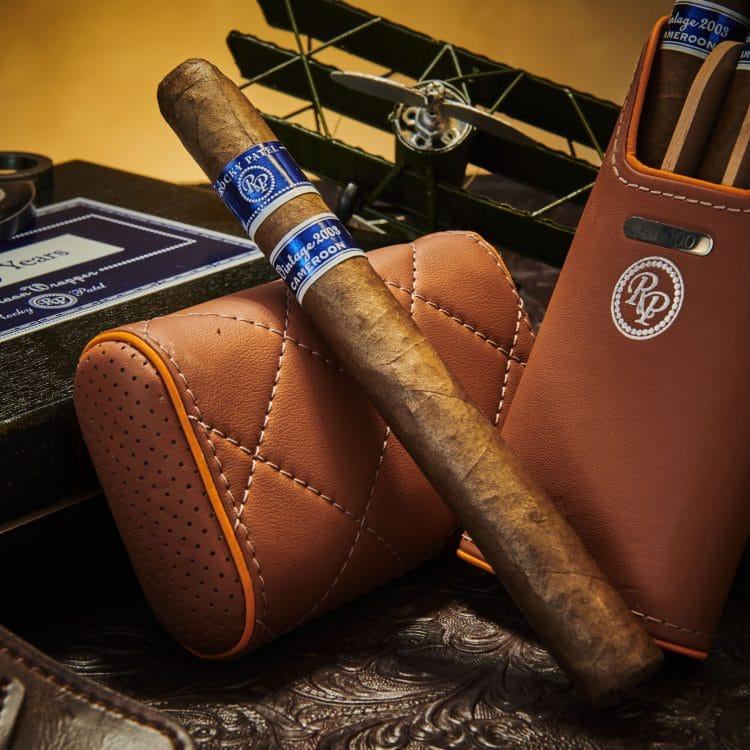 Cigar Rocky Patel Vintage 2003 17