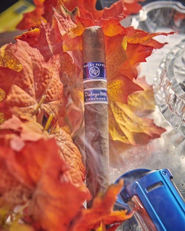 Cigar Rocky Patel Vintage 2003 3