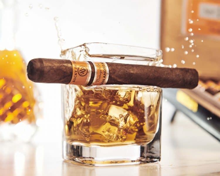 Cigar Rocky Patel Vintage 2006 10