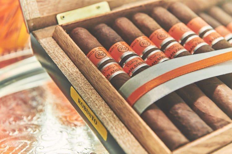 Cigar Rocky Patel Vintage 2006 5