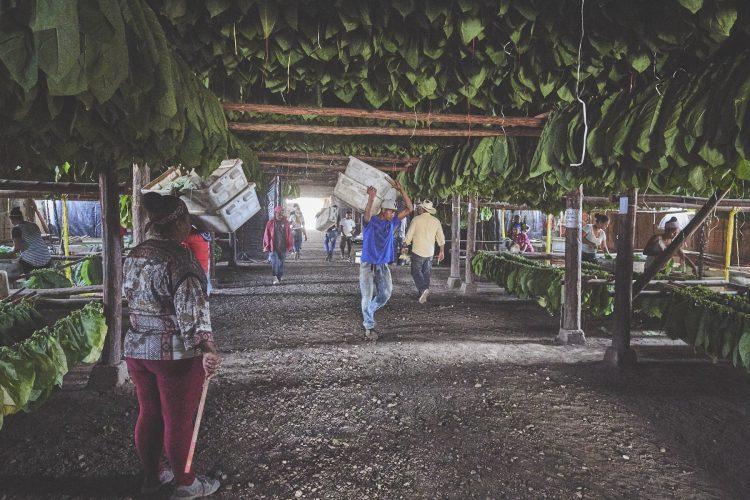 RP_Honduras_Nicaragua_DSC1490