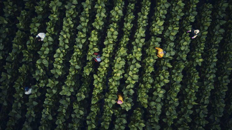 RP_Honduras_Nicaragua_Drone_Photos_DJI_0273