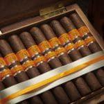 Cigar Rocky Patel Vintage 2006 17